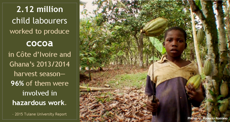 Child Labour in Cocoa_Tulane U report 2015