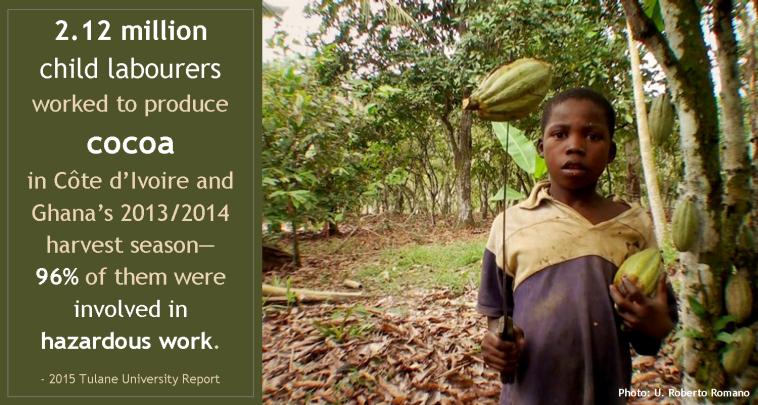 Child Labour in Cocoa_Tulane U report 2015