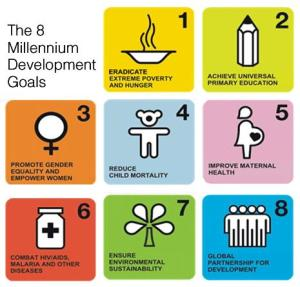 United Nations Millennium Development Goals.