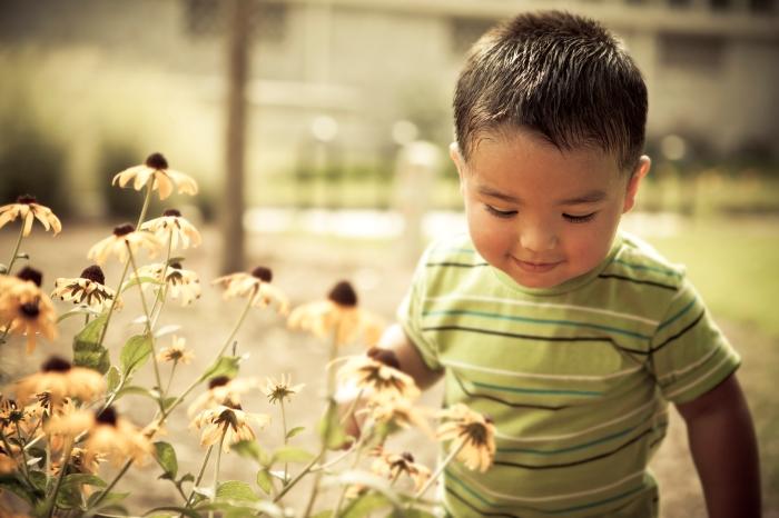 Transforming Children's Chances through Pre-PrimaryEducation